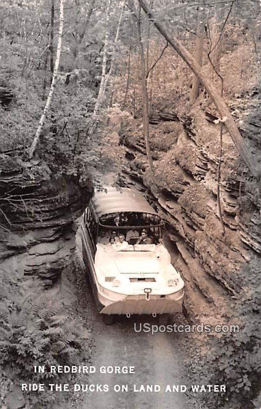 Redbird Gorge - Red Bird Gorge, Wisconsin WI Postcard