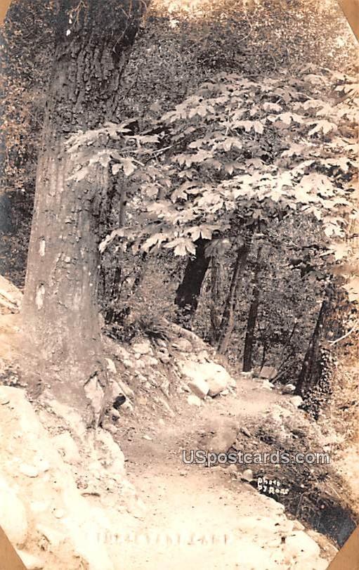 Tevant Camp - Sturtevant, Wisconsin WI Postcard