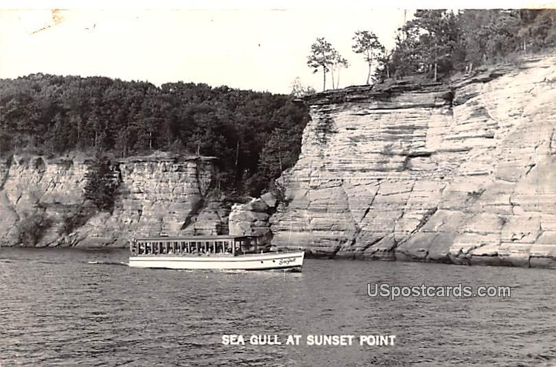 Sea Gull - Sunset Point, Wisconsin WI Postcard