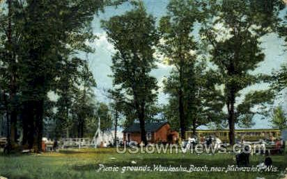 Picnic Grounds - MIlwaukee, Wisconsin WI Postcard