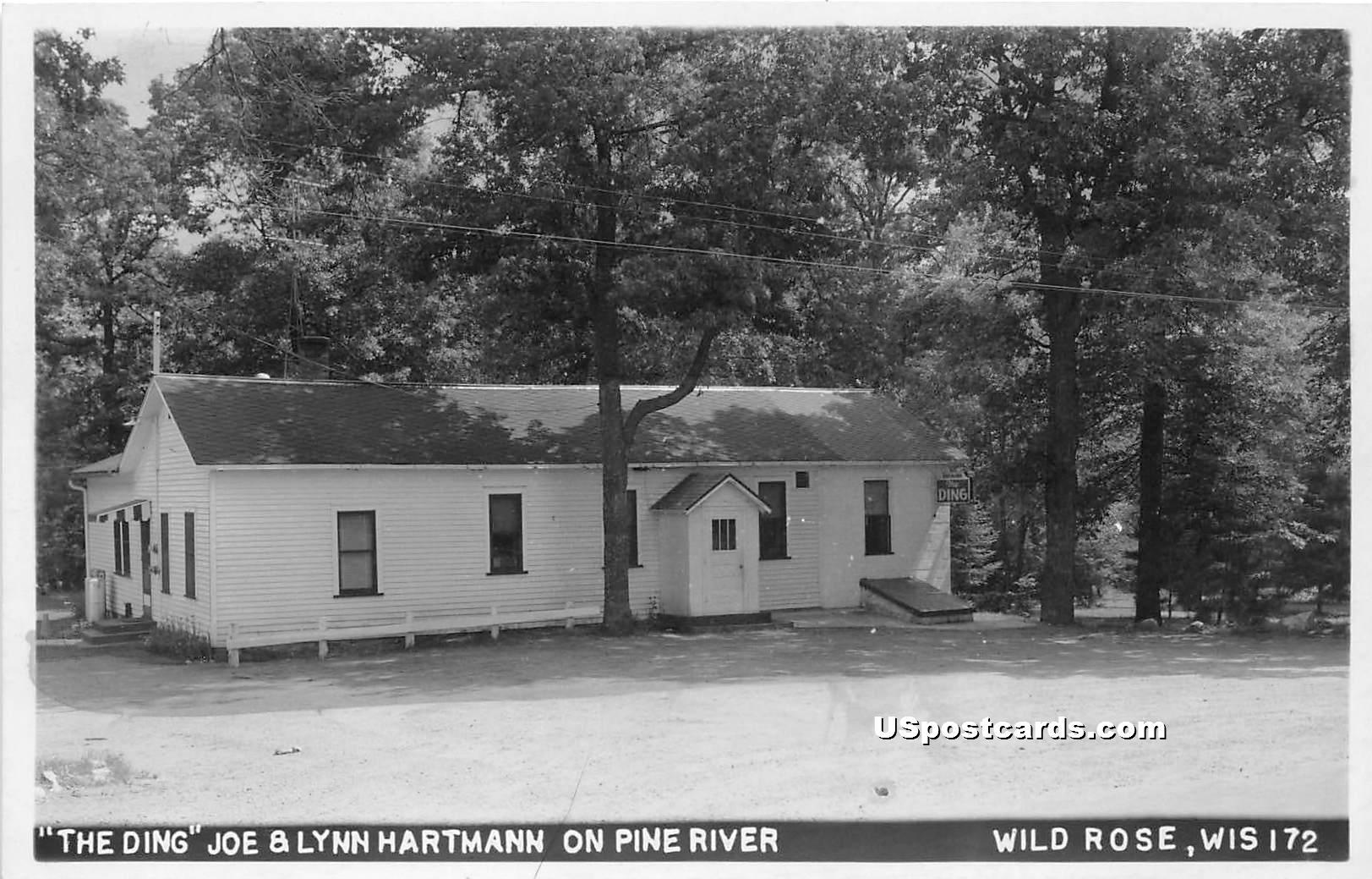 The Ding, Joe & Lynn Hartman - Wild Rose, Wisconsin WI Postcard