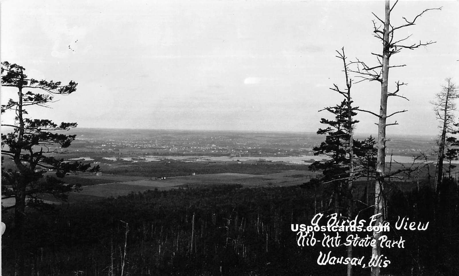 Rib Mountain State Park - Wausau, Wisconsin WI Postcard