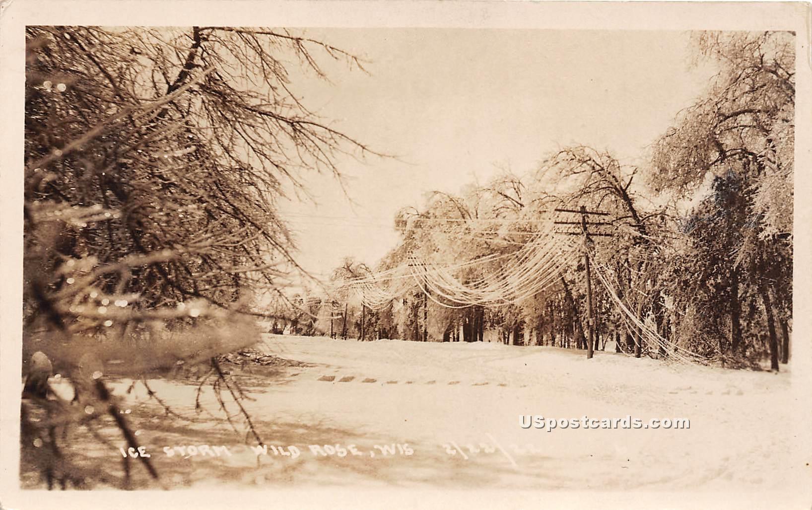 Ice Storm - Wild Rose, Wisconsin WI Postcard