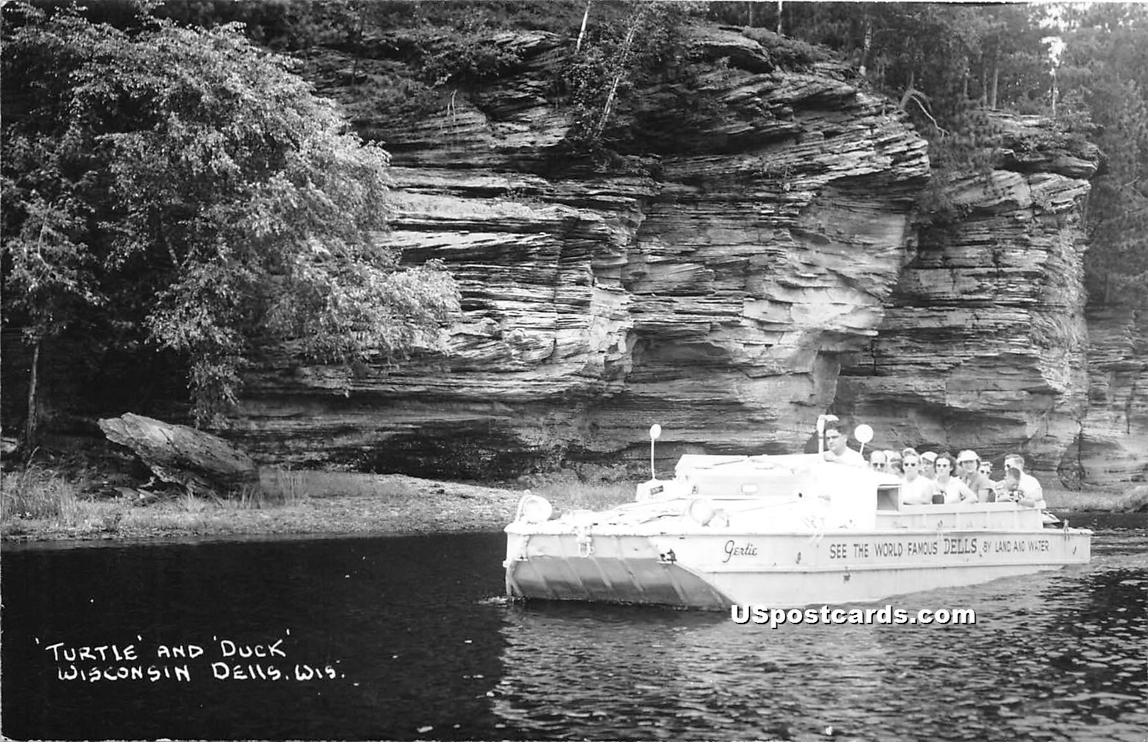 Turtle & Duck - Wisconsin Dells Postcards, Wisconsin WI Postcard