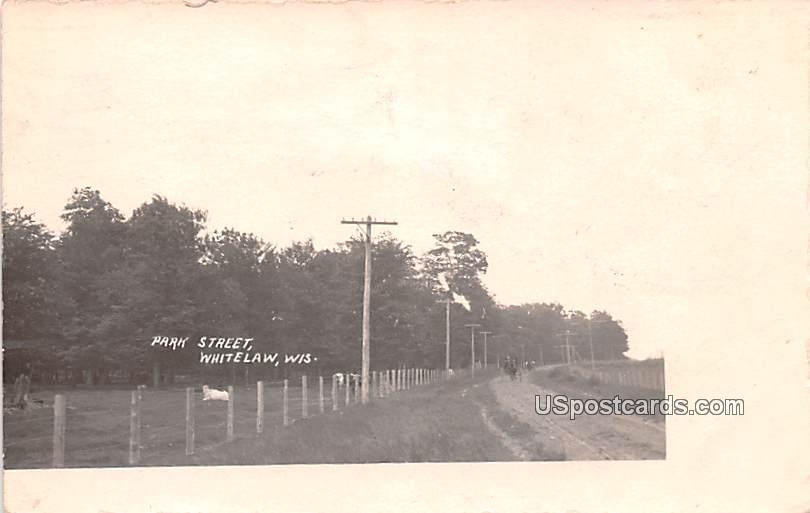 Park Street - Whitelaw, Wisconsin WI Postcard