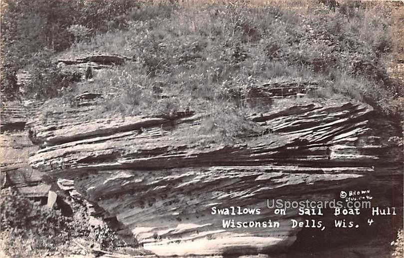 Swallows on Sail Boat Hull - Wisconsin Dells Postcards, Wisconsin WI Postcard
