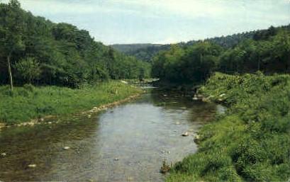 Shaver's Fork  - Cheat River, West Virginia WV Postcard