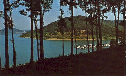Tygart River Valley Lake  - Grafton, West Virginia WV Postcard