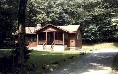 Blackwater Falls State Park - Davis, West Virginia WV Postcard