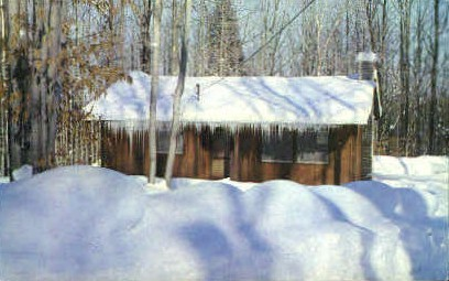 Vacation Cabin  - Davis, West Virginia WV Postcard