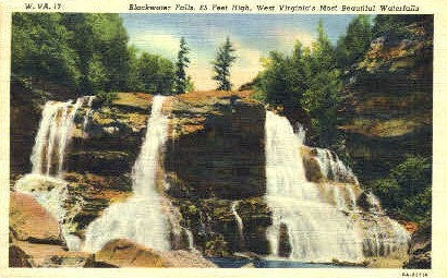 Blackwater Falls State Park, West Virginia, WV Postcard