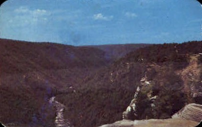 Blackwater Canyon  - Blackwater Falls State Park, West Virginia WV Postcard