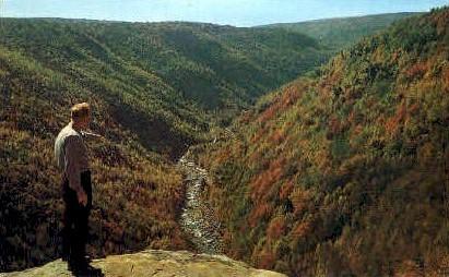 Blackwater Canyon  - Davis, West Virginia WV Postcard