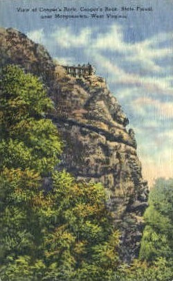 Coopers Rock  - State Forest, West Virginia WV Postcard