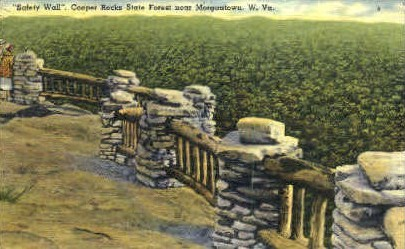 Safety Wall  - Coopers Rock State Park, West Virginia WV Postcard