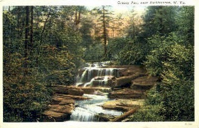 Grassy Run  - Buckhannon, West Virginia WV Postcard