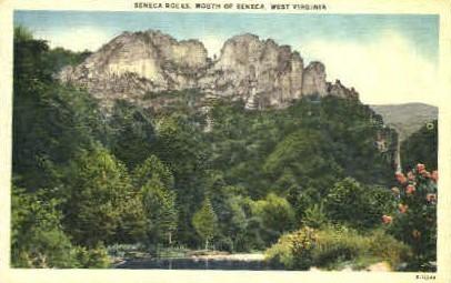 Monongahela National Forest, West Virginia, WV Postcard