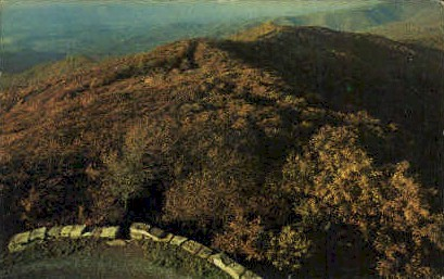 Reddish Knob  - George Washington National Forest, West Virginia WV Postcard