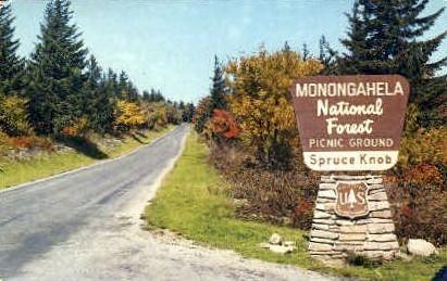 Monongahela National Forest  - Spruce Knob, West Virginia WV Postcard
