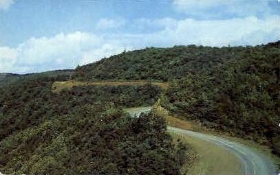 North Fork Mountain  - Pendleton County, West Virginia WV Postcard