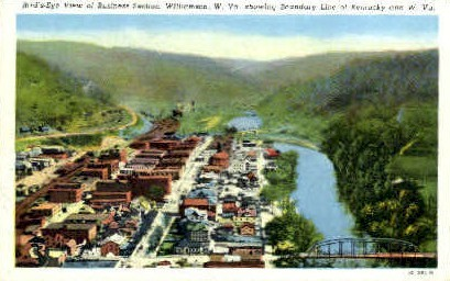 Business Section  - Williamson, West Virginia WV Postcard