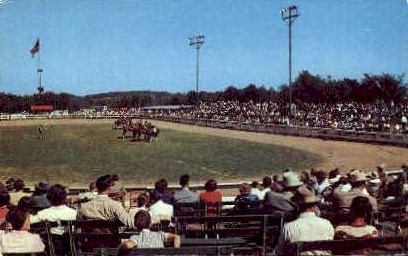 The Horse Show - Wheeling, West Virginia WV Postcard