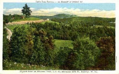 Lee's Tree Tavern  - Rainville, West Virginia WV Postcard