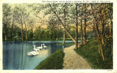 The Swan Lake  - White Sulphur Springs, West Virginia WV Postcard