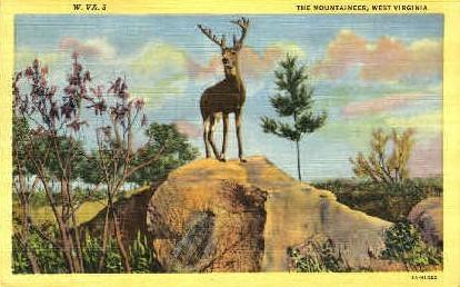 The Mountaineer  - MIsc, West Virginia WV Postcard
