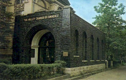 Tug Valley Chamber of Commerse - Williamson, West Virginia WV Postcard