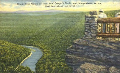 Cheat River Gorge  - Morgantown, West Virginia WV Postcard
