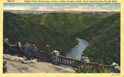 Cheat River Gorge  - Coopers Rock State Park, West Virginia WV Postcard