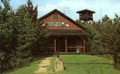 Sugarloaf Country Store - Meadowcroft Village, West Virginia WV Postcard