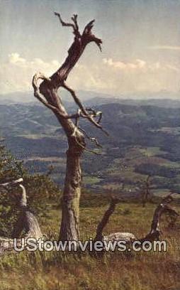 Whitetop Mountain, WV,     ;     Whitetop Mountain, West Virginia Postcard