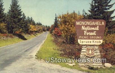 Monongahela National Forest, West Virginia,     ;     Monongahela National Forest, WV Postcard