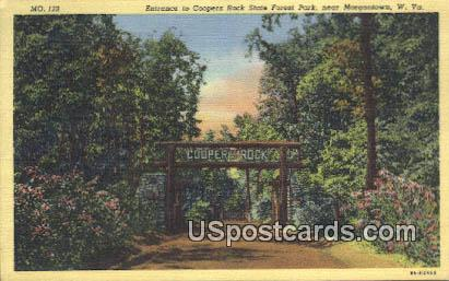 Coopers Rock State Forest Park - Morgantown, West Virginia WV Postcard