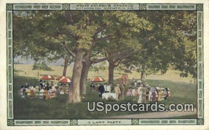 Lawn Party - White Sulphur Springs, West Virginia WV Postcard