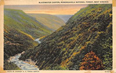 Monongahela National Forest WV