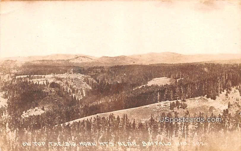 On top the Big Horn Mountain - Buffalo, Wyoming WY Postcard