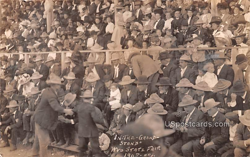 In the Grand Stands - Douglas, Wyoming WY Postcard