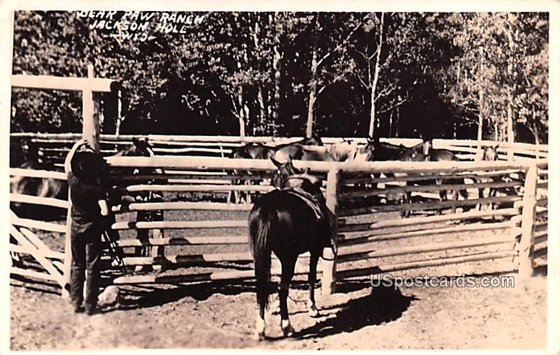 Blar Paw Ranch - Jackson Hole, Wyoming WY Postcard