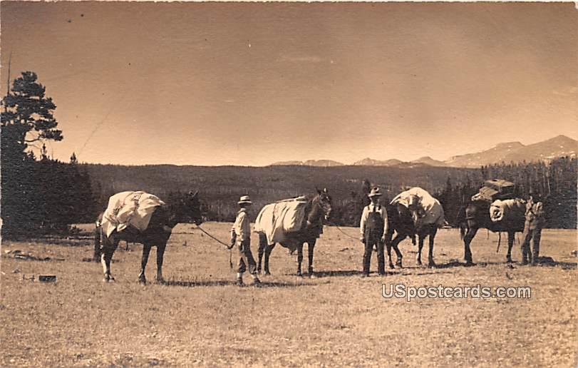 Ranchers - Misc, Wyoming WY Postcard