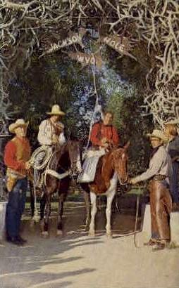 Jackson Hole Justice - Wyoming WY Postcard