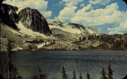Medicine Bow National Forest - Laramie, Wyoming WY Postcard