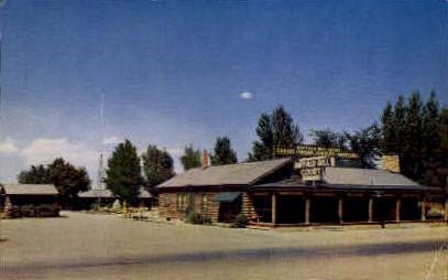 Buffalo Bill Court - Cody, Wyoming WY Postcard