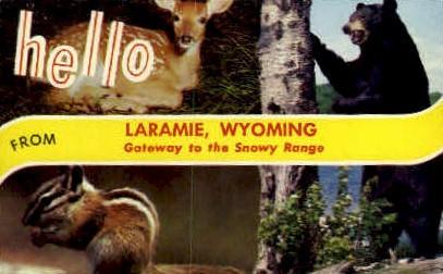 Hello - Laramie, Wyoming WY Postcard