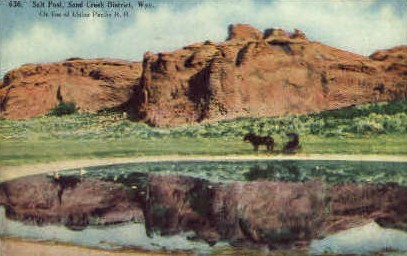 Salt Pool - Sand Creek District, Wyoming WY Postcard
