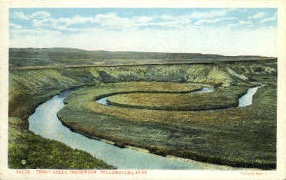 Trout Creek Trademark - Yellowstone National Park, Wyoming WY Postcard