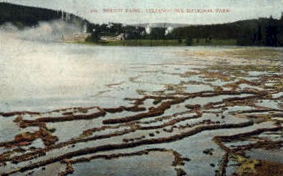 Biscuit Basin - Yellowstone National Park, Wyoming WY Postcard