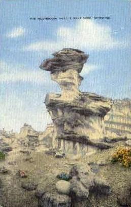 The Mushroom - Hell's Half Acre, Wyoming WY Postcard
